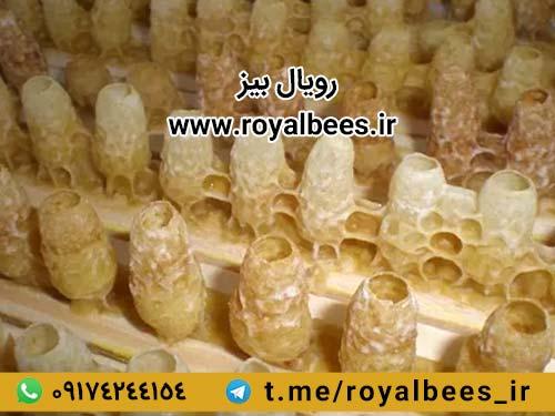 آیا ژل رویال در شیراز هم به فروش میرسد؟